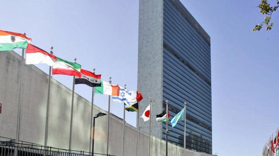 10c33334-UN General Assembly
