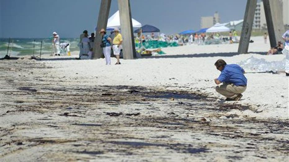 Gulf Oil Spill Victims: Nature