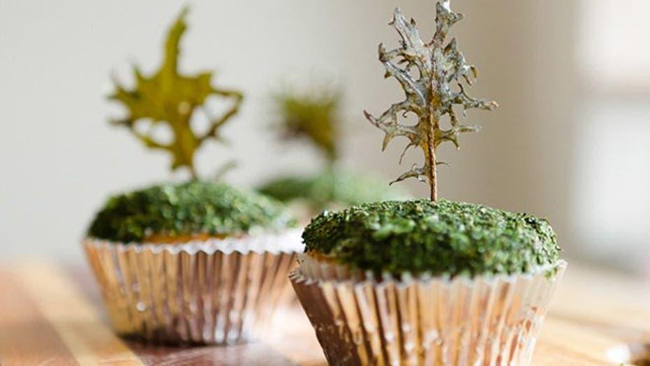 Wild and wacky cupcake recipes
