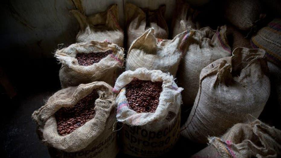 Venezuela's famed chocolate struggling amid economic woes