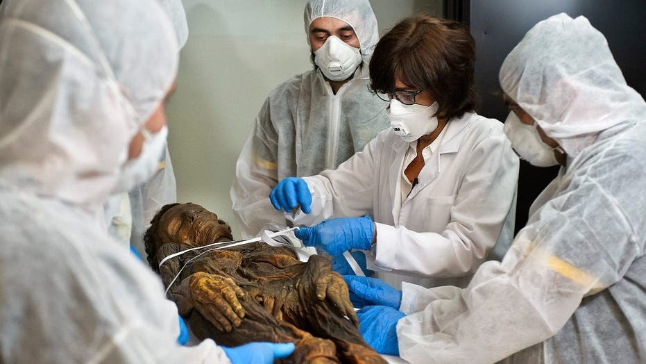 Spanish scientists scan mummified remains
