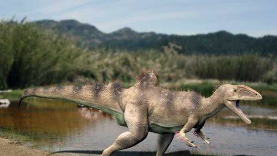 19 crazy critters from the cretaceous