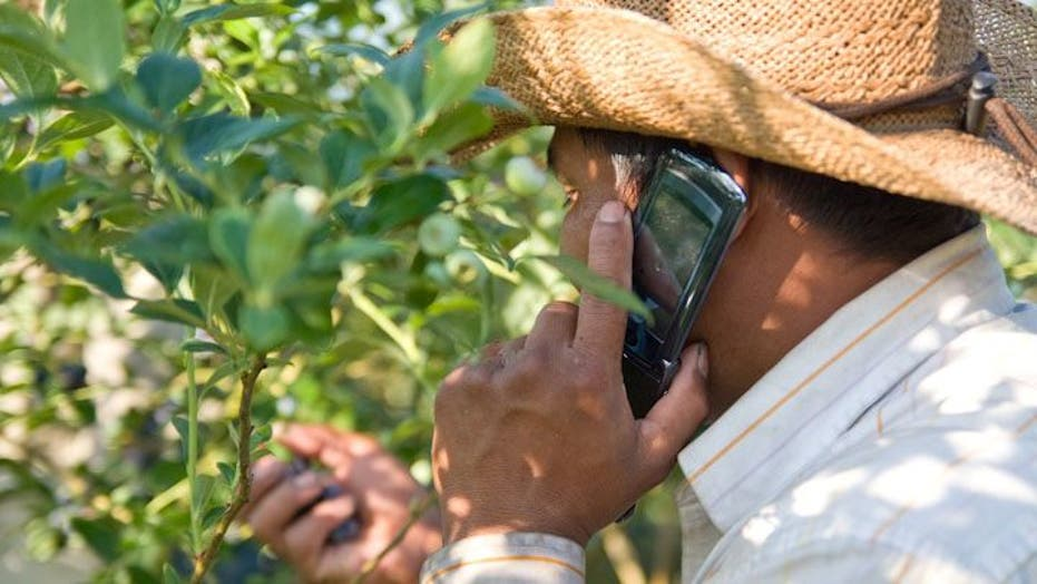 Farmworkers and Cell Phones