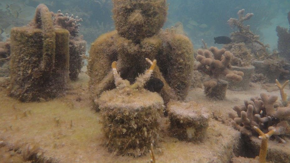 Dive into fun at the Cancun Underwater Museum