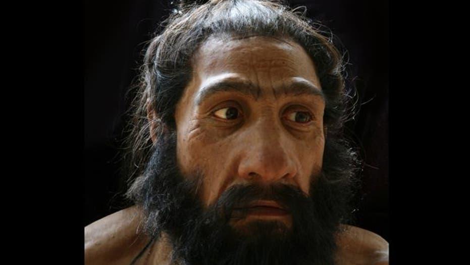 Your Ancestor, the Caveman