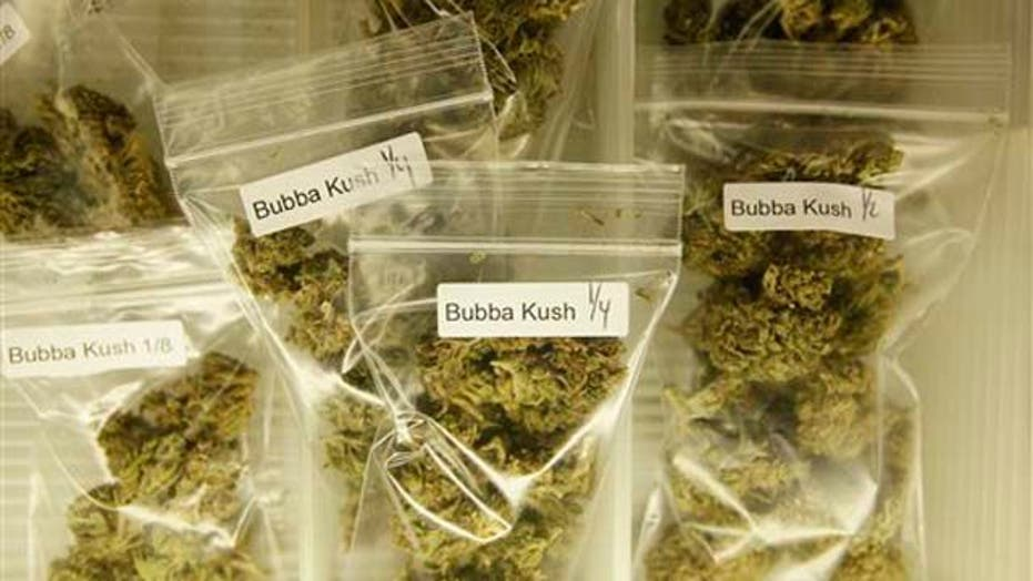 Record Pot Bust Up in Smoke