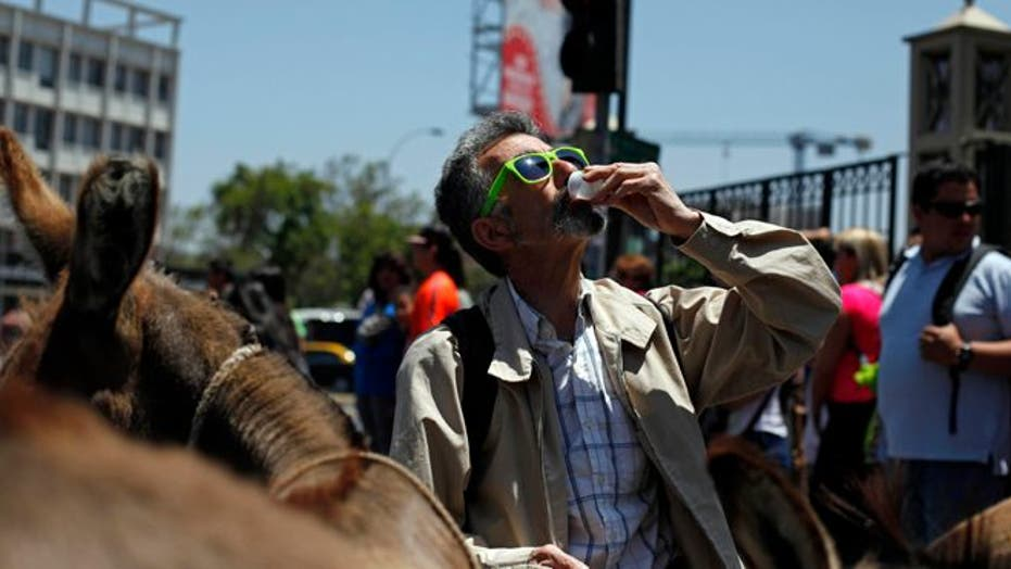 Residents of Santiago can pay $2 for a shot glass full of donkey's milk