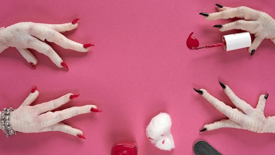 Surreal images show animal hands doing human things