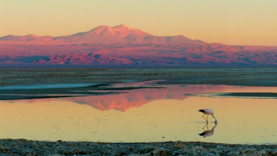 Star gazing adventure in Chile's Atacama Desert