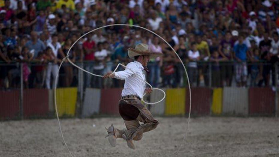 Horses Dance, Bulls Buck At Cuba's Rodeo