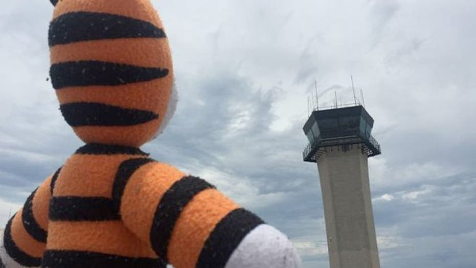 Hobbes the Tiger's excellent adventure