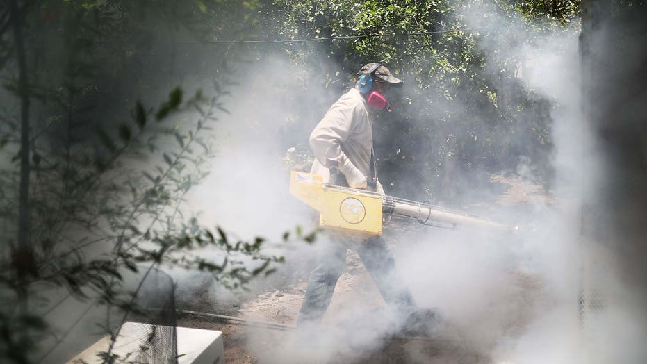 Hipster haven in Miami becomes epicenter of Zika outbreak