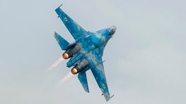 American pilot killed in Ukrainian Air Force fighter jet crash