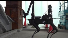 Boston Dynamics' creepy robot dog is now showing up at construction sites