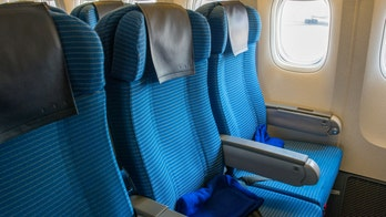 Airplane study suggests headrests, seatback pockets are germiest surfaces in cabin