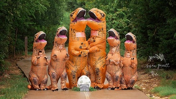 Texas family sports dinosaur costumes for pregnancy announcement