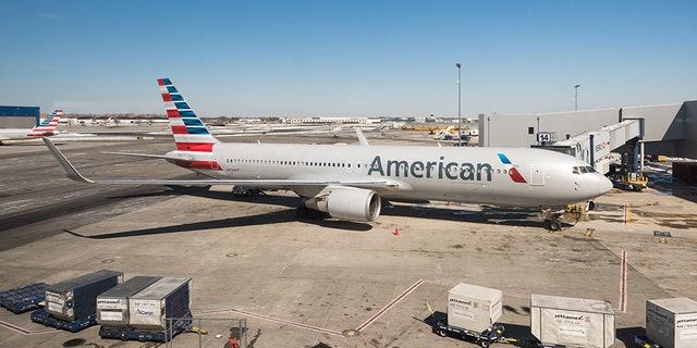 """American Airlines revealed Wednesday that a baggage handler fell asleep in a plane's cargo hold and unintentionally flew from Kansas City to Chicago.<br data-cke-eol=""""1"""">"""