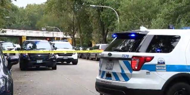 Douglass Watts, 73, was shot and killed Sunday morning in the Rogers Park neighborhood on Chicago's North Side while walking his dogs.