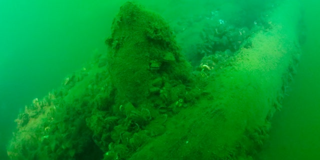 This Tuesday, Sept. 4, 2018, photo provided by Cleveland Underwater Explorers Inc. shows the remains of a shipwreck believed to be the Lake Serpent. (David M VanZandt/Cleveland Underwater Explorers Inc. via AP)