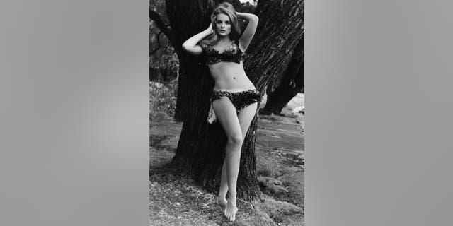 Portrait of actress Celeste Yarnall wearing a two piece, animal print bathing suit, posing in front of a tree at Regent's Park, London, Aug. 16, 1967.