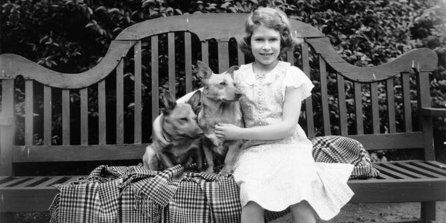July 1936: Princess Elizabeth sitting on a garden seat with two corgi dogs at her home on 145 Piccadilly, London.