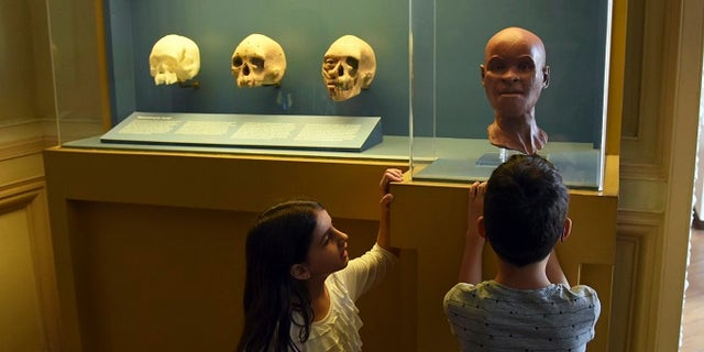 This photo showed the oldest human fossil found in Brazil, dubbed Luzia, at the National Museum of Brazil in Rio de Janeiro, Brazil.