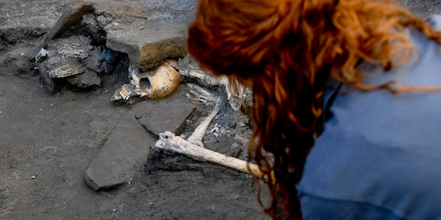 An archaeologist inspects skeletons in the Pompeii archaeological site, Italy, Wednesday, Oct. 24, 2018. (Ciro Fusco/ANSA via AP)