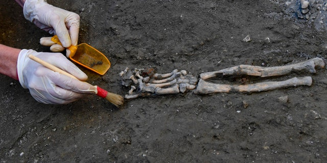 The undisturbed skeletons provide an insight into the devastating eruption of Vesuvius in 79 AD. Italy, Wednesday, October 24, 2018.