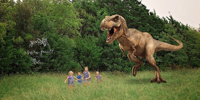 The family plans to throw a dinosaur-centric gender reveal party for the baby soon, too.