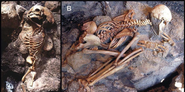 "Skeletons showing ""life-like"" stance: A child (A) and a young adult male (B)  unearthed from the ash surge deposit. The child's corpse displays flexure only of the upper limbs, indicative of an incipient ""pugilistic attitude"". Full exhibit of this heat-induced stance is never found in the victims' corpses discovered at Herculaneum. (Credit: PLoS One)"