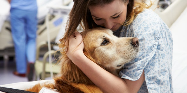 Kids who spent more time with the dogs had a 6 times greater chance of coming away with superbug bacteria than kids who spent less time with the animals.