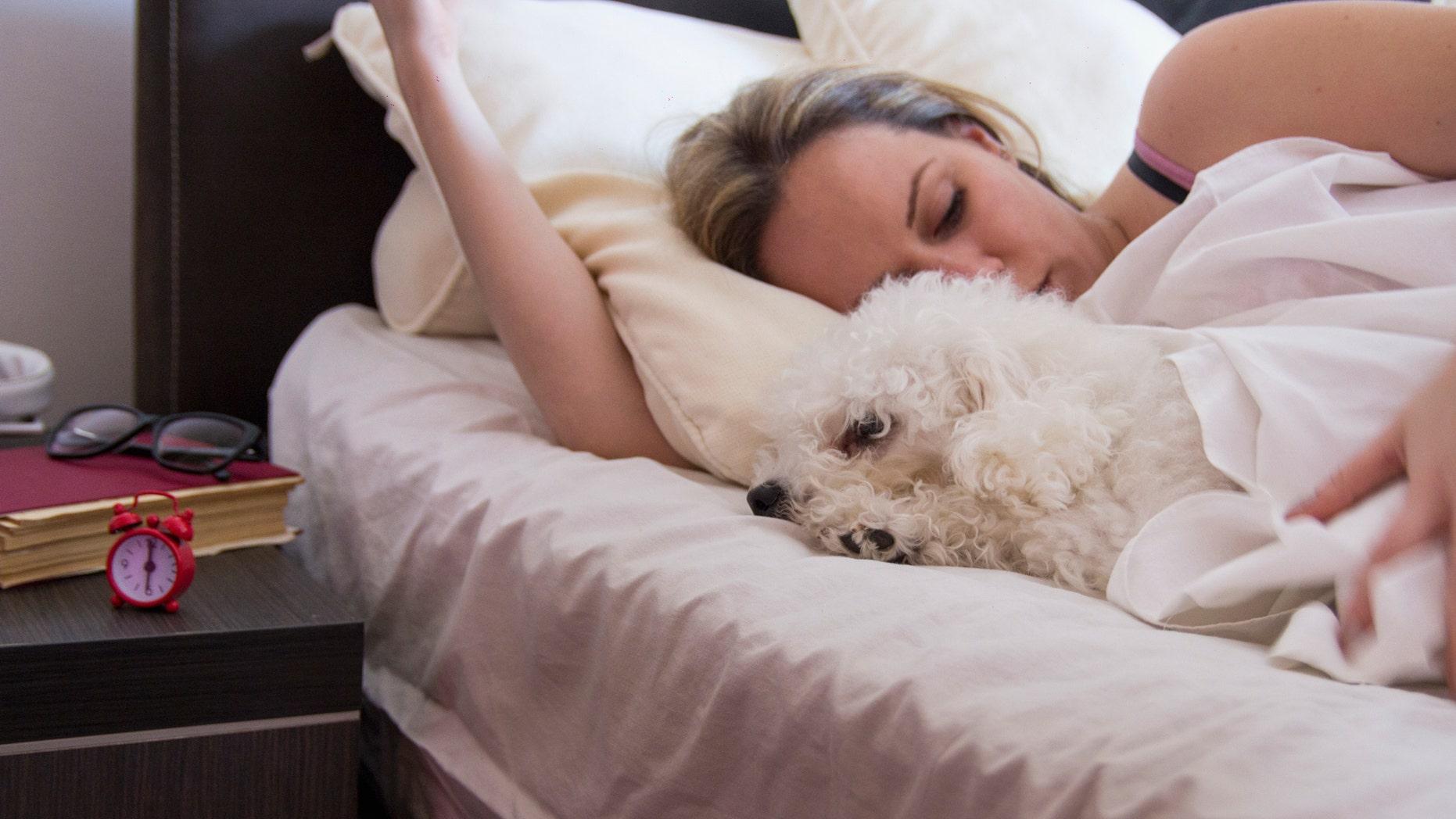 Women Sleep Better Next to Dogs Than Cats