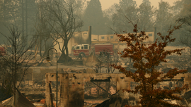 Dogs and DNA: Search for California fire victims intensifies