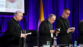 Bishops weigh anti-abuse strategy after delay set by Vatican