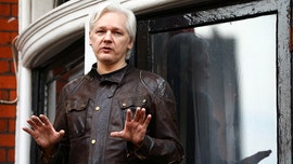 Wikileaks founder Julian Assange facing possible prosecution by DOJ: report