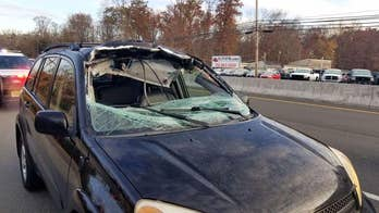 Deer goes through New Jersey woman's windshield, lands in back seat