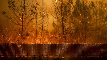 California wildfire victims aided through Red Cross, GoFundMe donations, more: How you can help