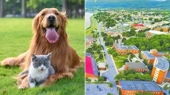 This Pennsylvania university is getting a pet-friendly dorm