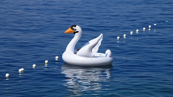 Florida woman and son drift miles away from shore on inflatable swan: 'This could have ended so much worse'