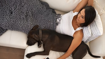 Women sleep better next to dogs versus people or cats, study finds