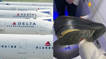 Delta apologizes after customer was 'covered' in dog poop from seat