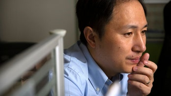 China is halting the work by team on gene-edited babies