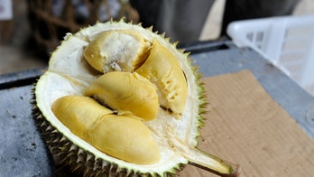 Indonesian airline delays flight after passengers argue with staff over smell of durian fruit in cargo