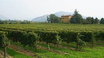 Love bubbly? Visit this sparkling wine region instead of Champagne