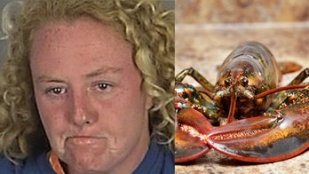 Florida woman busted for stealing live lobster from Red Lobster