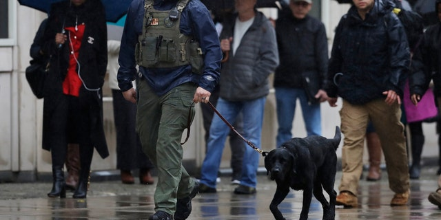 "A K-9 team walks past people waiting to enter Brooklyn federal court, Tuesday, Nov. 13, 2018, in New York. Opening statements at the trial of the notorious Mexican drug lord Joaquin ""El Chapo"" Guzman are to begin Tuesday morning under tight security. The evidence will include the testimony of more than a dozen cooperating witnesses who prosecutors say are risking retribution by taking the stand. (AP Photo/Mark Lennihan)"