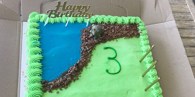 Brilliant Pathetic Frog Birthday Cake From Supermarket Leaves Parents Funny Birthday Cards Online Alyptdamsfinfo