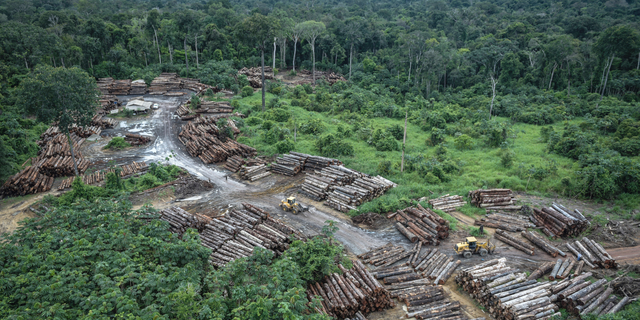 This photo released by the Brazilian Environmental and Renewable Natural Resources Institute (Ibama) shows an illegally deforested area on Pirititi indigenous lands as Ibama agents inspect Roraima state in Brazil's Amazon basin.  (Felipe Werneck/Ibama via AP)