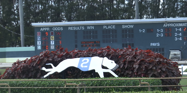 Because racing won't be illegal in the state for another 25 months, some tracks plan to keep racing until the end of 2020, while others have already called it quits.