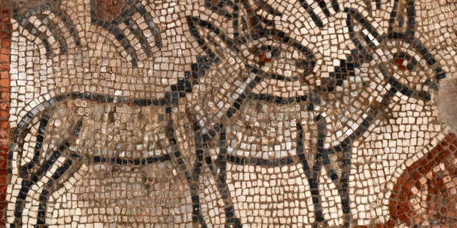 Previously, only portions of the mosaics were released, such as this one from the Noah's Ark panel. (Jim Haberman, Courtesy UNC-Chapel Hill)